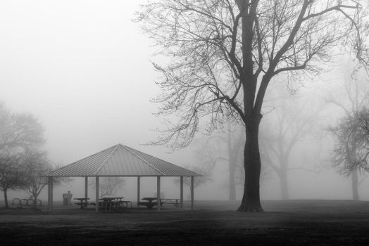 Foggy Morning Park by redwolf518