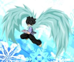 Ice Wings by KingTaro by LordTaro
