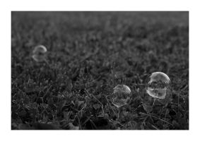 Bubbles on the Lawn by Cami-Monster