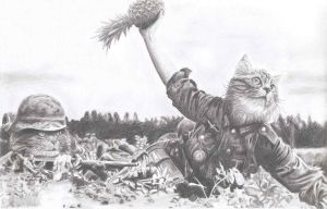 Cat soldier throws pineapple by eugene23