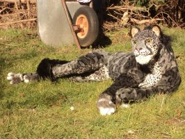 Blue Panther in the sun by Kreativjunkie