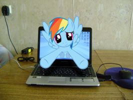 Rainbow Dash in my laptop by OLEG778