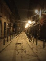 -Toulouse In SnowMode Five- by Hemingway81