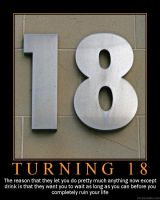 Turning 18 Demotivator by novaburst16