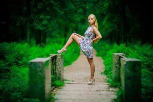 Alone on the bridge vol2 by shakis