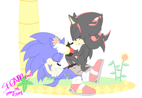 .::Sonadow::. At Green Hill by SEGAMew