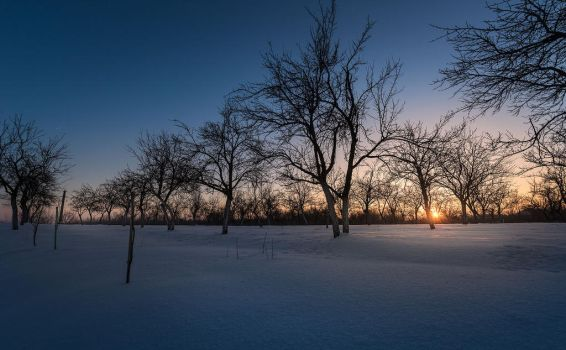 Sun of Winter by Valy20007