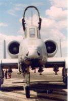 A-10 Thunderbolt II by Boomerang503