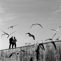 Essaouira ::1 by MisterKey