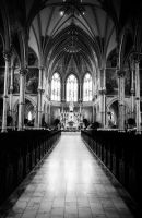 Cathedral in Savannah by richterjw