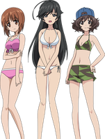 Girls und Panzer swimsuit scene by Roigawesomness
