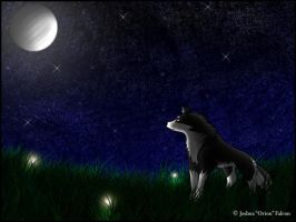 Moon Light Night by OrionsSnarl
