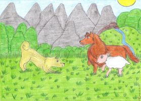 aph: Rough Collie vs. Norwegian Buhund by LoveEmerald