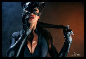 The Catwoman Files03 by alchemiststeve