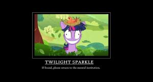 Twilight sparkle motivational poster by GreenDragon101