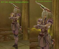 Beleg Cuthalion in Aion : Level 16 by fallenRazziel