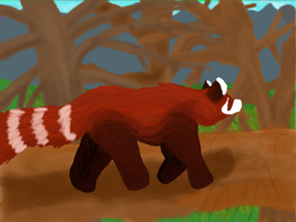 Red Panda What do you see? by Ramvling