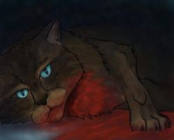 Hawkfrost by turnipBerry