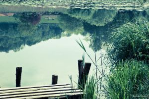 Reflection by Gela-s-Photographie