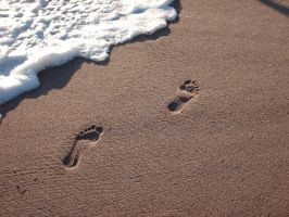 Footprints at Zuma 01 by yanagi-san