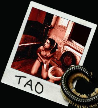 Tao by GryphonICD