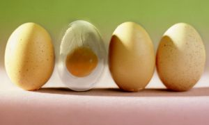 Glass Egg Practicing  - Photoshop. by manuvergara