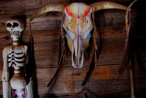 please be gentle............ by shotsfiredimagedown
