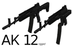 AK 12 - Rigged by ProgammerNetwork