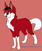 Me as a wolf by WarriorCatFanatic