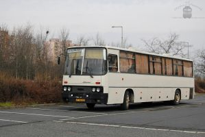 A white Ikarus 250 - Gyor - by morpheus880223