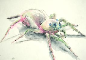 Monk Spider by Caustic-Substrate