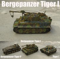 Bergepanzer Tiger 1 operational by DingoPatagonico