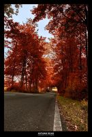 autumn road by jahno-pictures