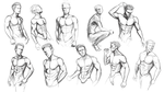 Torso Studies by Yaoi-Hirako