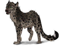 Snow Leopard by ShadeDreams