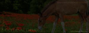 MeadowFoal by oceancoralgraphics