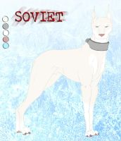 Soviet Character Sheet by CrazyRodeoGirl