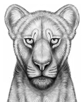 Lioness portrait by Ragous
