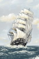 Cutty Sark Speedpaint by DevJohnson
