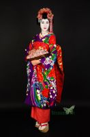 Maiko - Geisha Part V by Naraku-Sippschaft