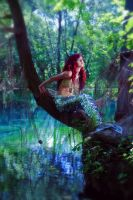 Mermaid on the branches by AlishaPs