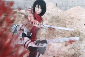 Shingeki no Kyojin Attack on titan by CosPlayJG