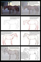 Horse Warmup + Trace Lesson by Kaljaia