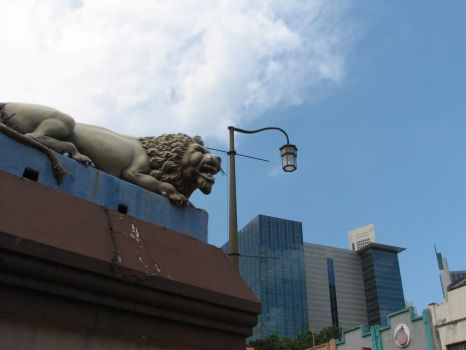 Lion in the city by nineknives