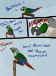 Life with a conure by Broadwinger