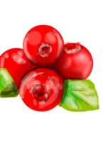 cranberries by ashbrigham