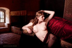 In the Bedchamber of King Herod by Quixotegraphics