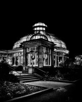 Allan Gardens Conservatory Palm House by thelearningcurve-da
