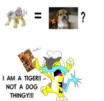 Raikou: I AM A TIGER by murkrowzy