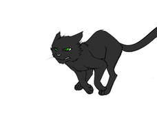 Warriors: Hollyleaf animation by Marshcold